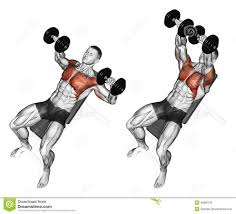 Bench Press Assistance Work My Shoulders Get Exhausted Before Chest While Doing Chest Exercise