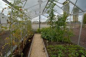 serre horticole en verre le potager sous serre mode d u0027emploi