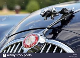badge and leaping cat bonnet mascot of a jaguar mk 2 3 8 litre