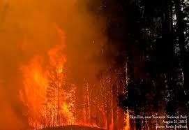 Western Us Wildfires 2015 by Patrick Gonzalez On Twitter