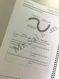 spm chemistry essay tips stuckabsorb tk