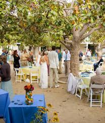 monterey wedding venues weddings in monterey portola hotel spa