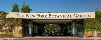 The New York Botanical Garden New York Ny New York Botanical Garden Photo Gallery By Robertson At