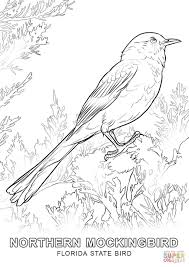 florida state bird coloring page free printable coloring pages