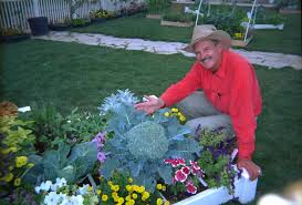 square foot gardening flowers why please tell me why mel bartholomew creator of square