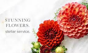 fairfax florist flower delivery by twinbrook floral design