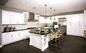 Home Depot Kitchen Cabinet Reviews by Frameless Kitchen Cabinets U2013 Fitbooster Me