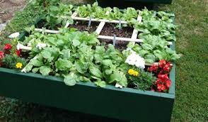 all the basics of square foot gardening mel bartholomew creator