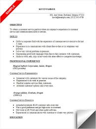 Example Of Objective Resume by Resume Customer Service Objective Examples