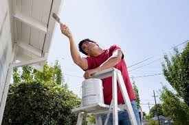 paint the house diy or hire a professional exterior house painter