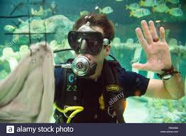 Kansas Snorkeling images Kansas city sea life aquarium stock photos kansas city sea life