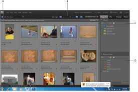 Organize Media by Photoshop Elements Tutorial Organizing Your Photos In Photoshop