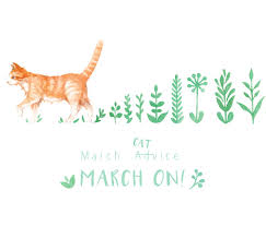 wallpaper cat illustration february bullet journal plan with me march evydraws