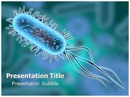 bacterium animated powerpoint templates and backgrounds