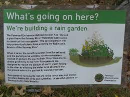 native plants for rain gardens rain garden built at fanwood borough hall scotch plains fanwood
