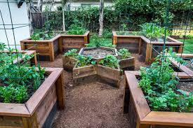 raised bed vegetable garden ideas traditional vegetable