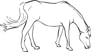 draw mustang horse free download clip art free clip