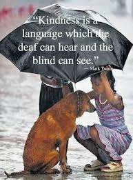 The Blind Will See The Deaf Will Hear Lyrics 518 Best My Quotes Images On Pinterest Quotes Thoughts And