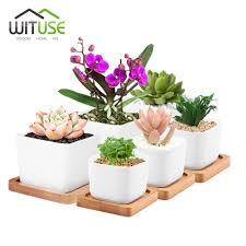 large succulent pot promotion shop for promotional large succulent