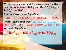 lesson plan net ionic equations by msrazz chemclass tpt