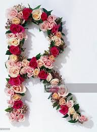flower images rose flower heads arranged to form the letter r stock photo