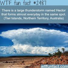 best 25 thunderstorm facts ideas on whoa meme