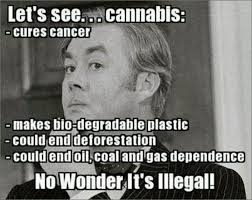 Legalize Weed Meme - 42 best legalize it images on pinterest ha ha funny stuff and