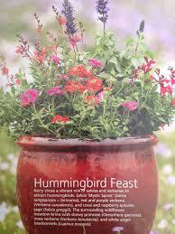 Flowering Patio Plants 1241 Best Flowers Plants U0026 Trees Images On Pinterest Gardening