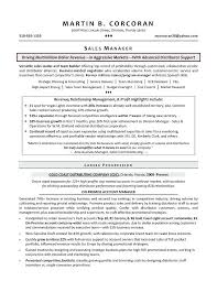 sample of a sales resume sales manager resume example sales