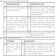 ncert solutions class 12th biology chapter 14 u2013 ecosystem
