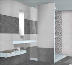 bathroom wall tile designs spectacular bathroom on bathroom tiles catalogue barrowdems