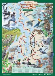 Seattle Zip Codes Map by Diversity In Nature Summer Camp With The Birds In Seattle U0027s Most