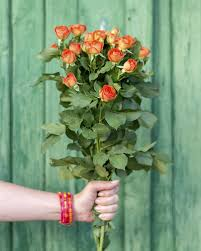 what is the history and meaning of orange roses