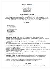 Sample Of Work Experience In Resume by Professional Audit Assistant Resume Templates To Showcase Your
