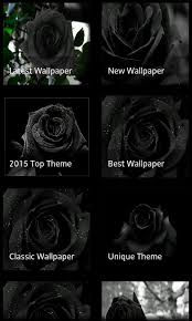 theme black rose amazon com black rose 3d live wallpaper appstore for android