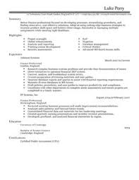 Plain Text Resume Example by Accounting Finance Cv Examples Cv Templates Livecareer