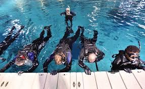 Georgia snorkeling images Georgia aquarium makes usatoday list of best aquariums in the u s jpg
