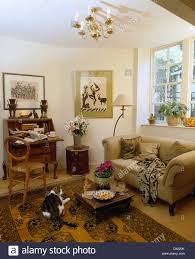 Beige Sofa Living Room by Cat Lying On Oriental Rug In Front Of Beige Sofa In Cottage Living