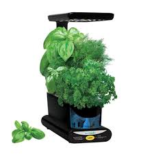 miracle gro aerogarden sprout led with gourmet herb seed pod kit
