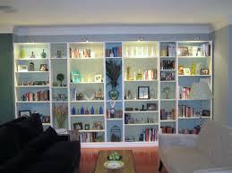 fascinating built in bookshelves with cabinet below pics