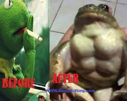 Funny Frog Meme - 10 reasons why kermit the frog is swole and you re not about lifting