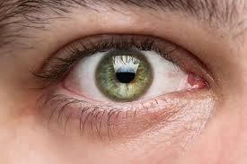 Are Mice Blind Three Blind Mice Just Got Their Vision Restored U2014 Could Humans Be