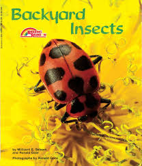 backyard insects millicent e selsam ronald goor 9780590422567