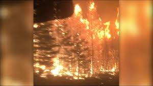 Wildfires In Bc July 2014 by 5 Must See Videos From B C Wildfires No 4 Shows Real Terror
