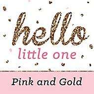hello baby shower theme girl baby shower themes bigdotofhappiness