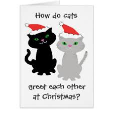 funny cat christmas cards invitations greeting u0026 photo cards