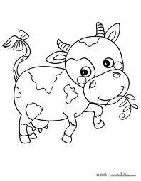 coloring cute baby calf coloring book pictures