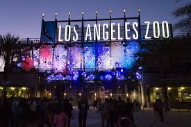 Zoo Lights Pictures by Your First 2015 Holiday Playlist Kcrw U0027s L A Zoo Lights Music Mix