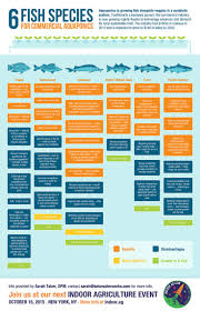 Backyard Business Ideas by Best 25 Fish Farming Ideas On Pinterest Aquaponics Aquaponics
