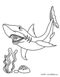 sharks coloring pages hammerhead shark coloring page unit studies sharks pinterest